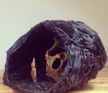 Ouroboros : Nest / Egg