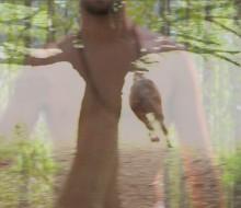 Centaur Forest video