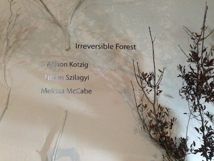 Irreversible Forest: site-specific interactive video installation for Art Miami  2014