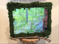 Centaur Forest Wall video installation